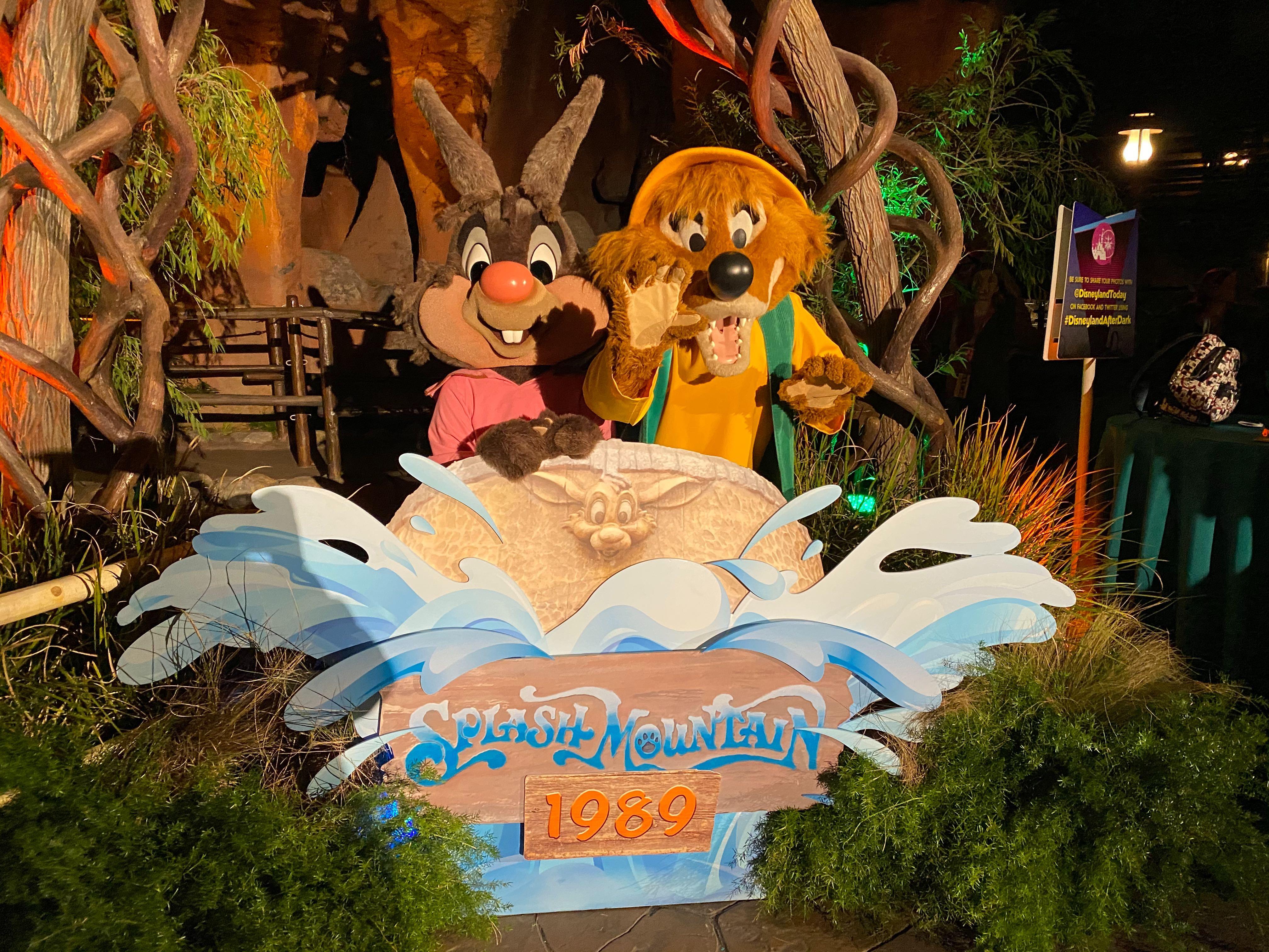 Brer Rabbit and Brer Fox Disneyland After Dark: 80's Nite
