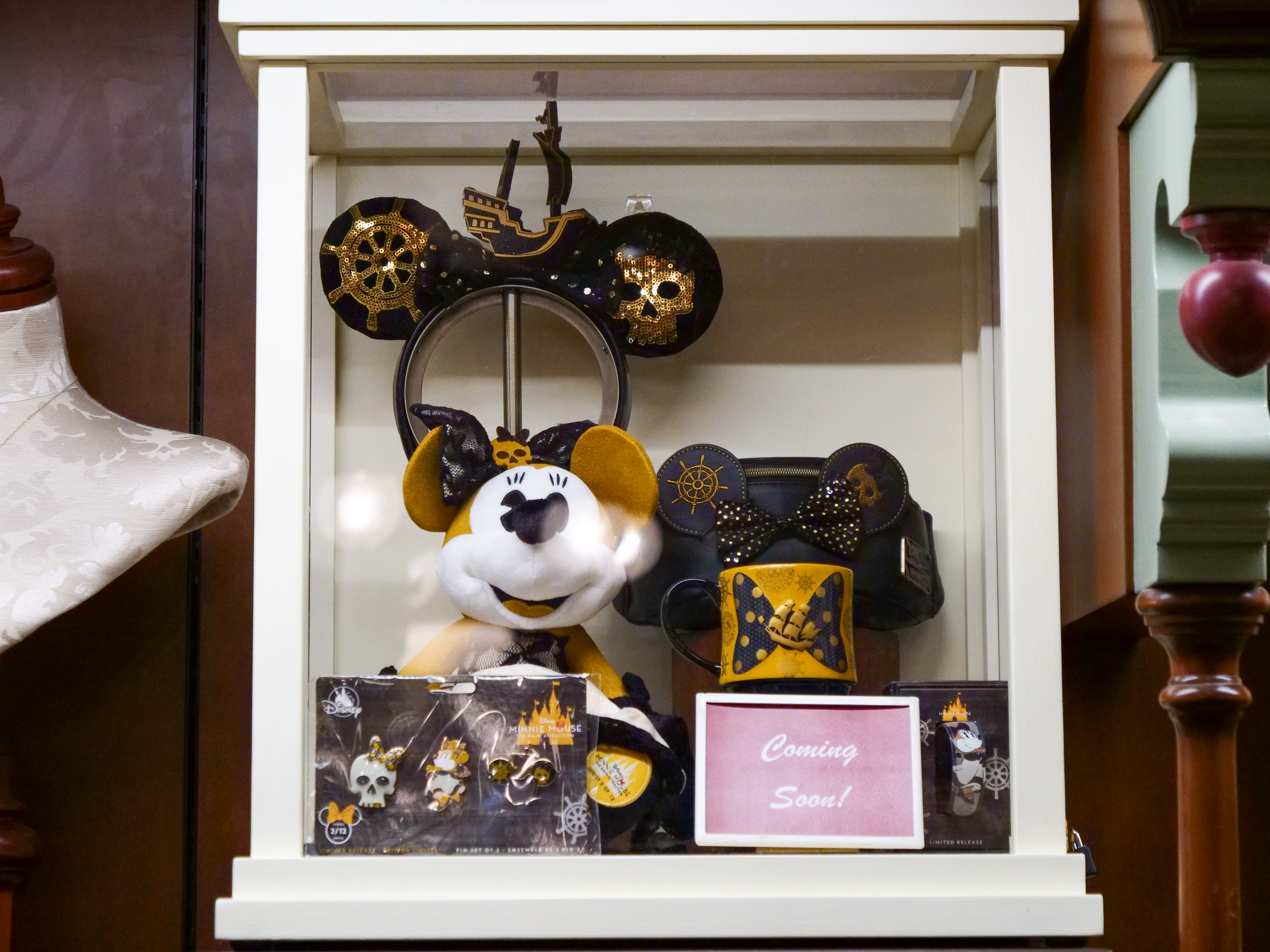 Minnie the Main Attraction Display