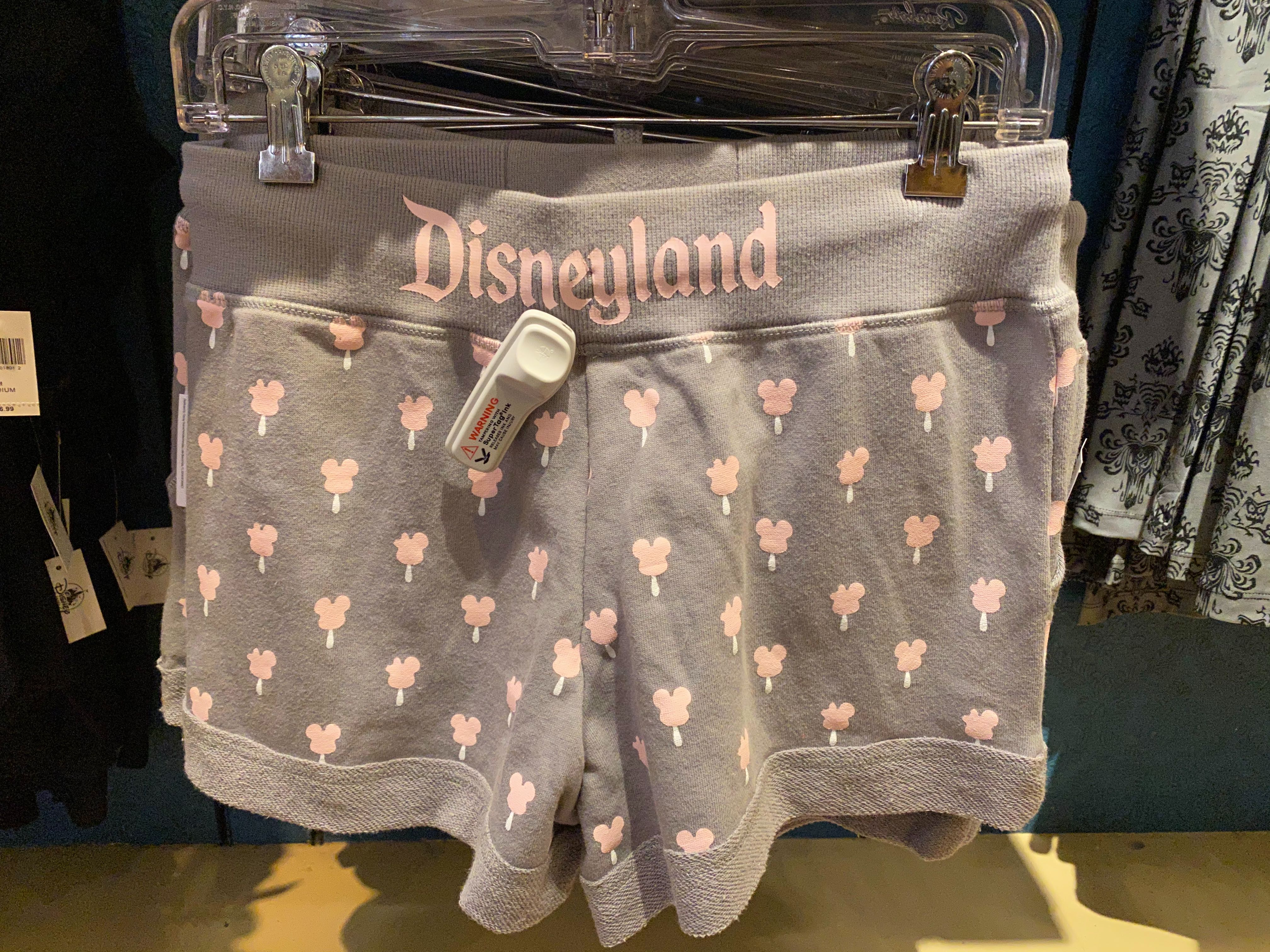 disneyland-icon-merch-02-23-2020-13.jpg