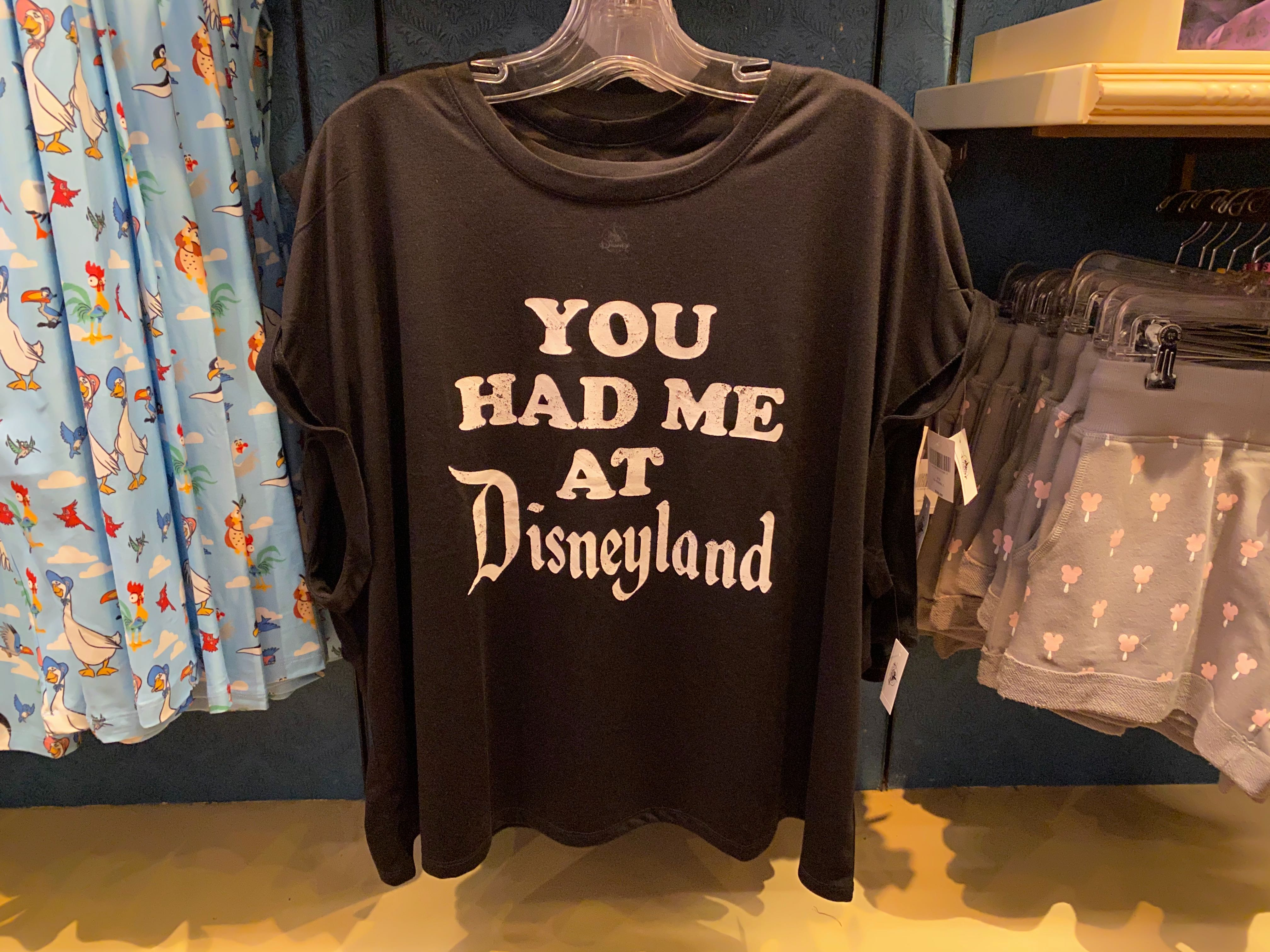 disneyland-icon-merch-02-23-2020-17.jpg