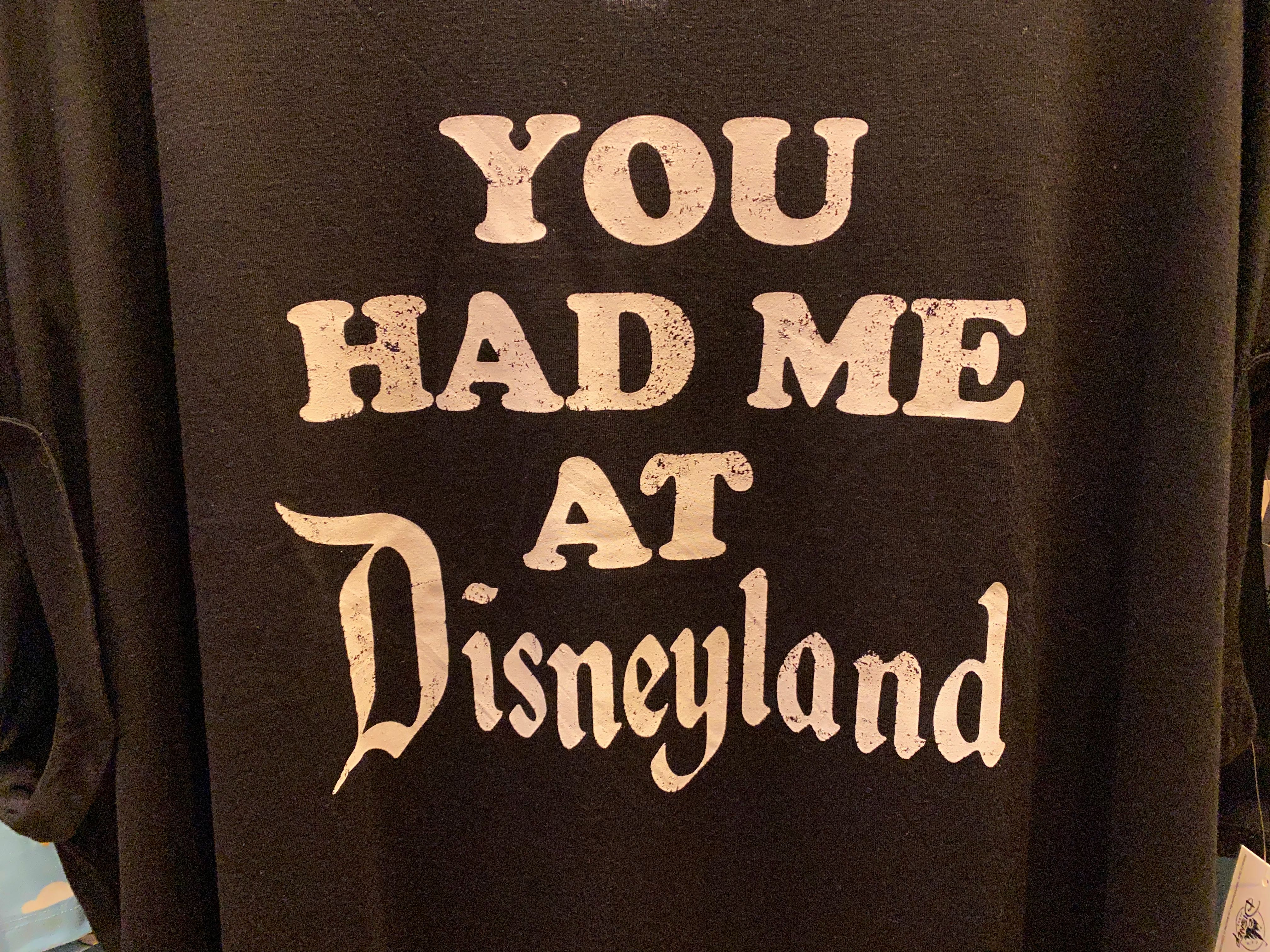 disneyland-icon-merch-02-23-2020-18.jpg