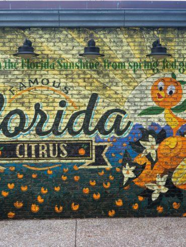 Orange Bird Mural at Disney Springs