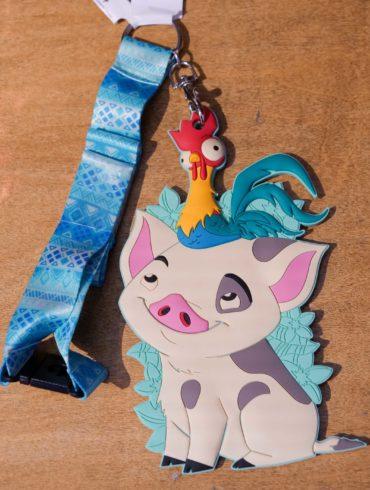 Moana Laynard World of Disney ID