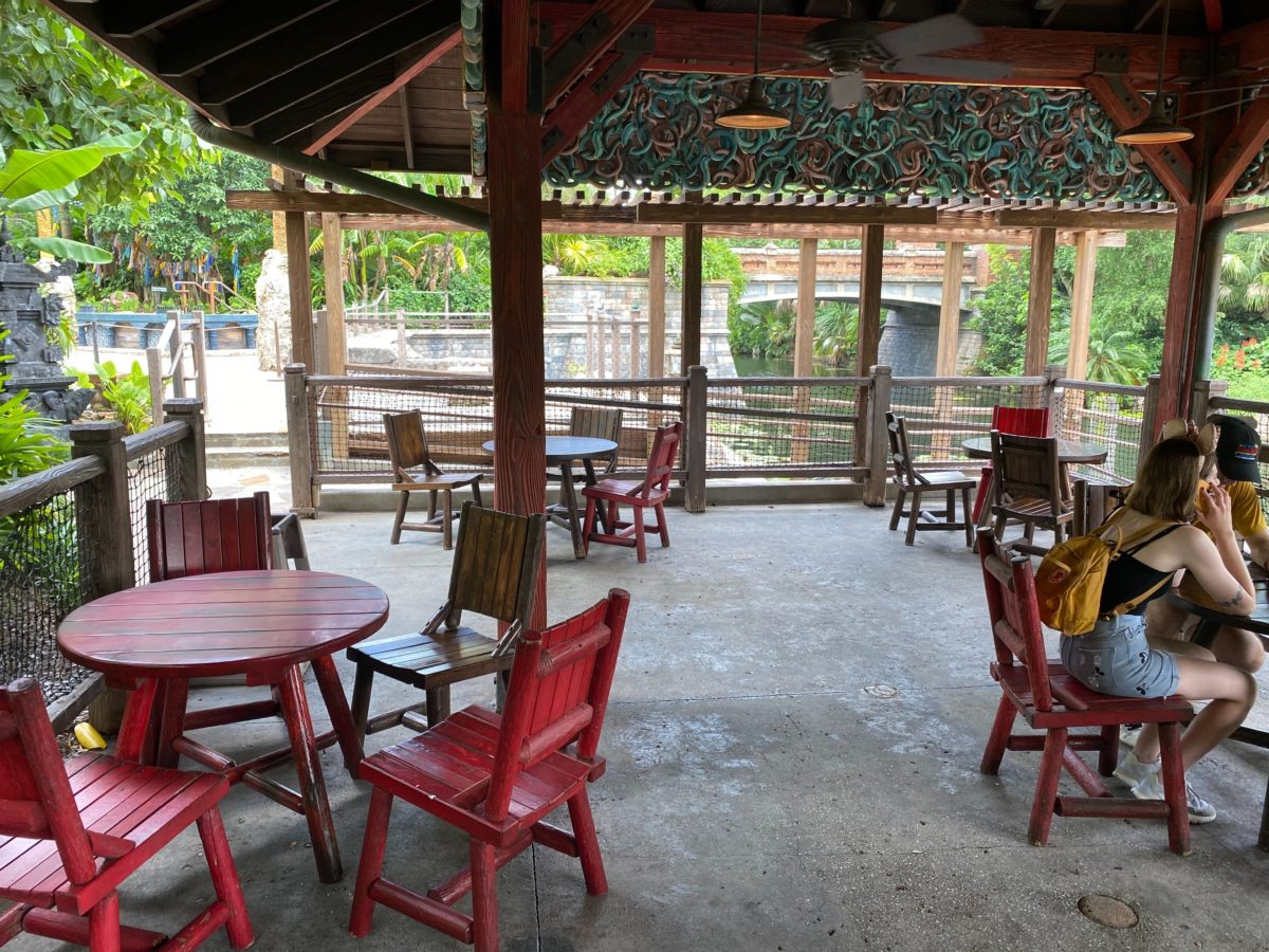 relaxation station asia animal kingdom