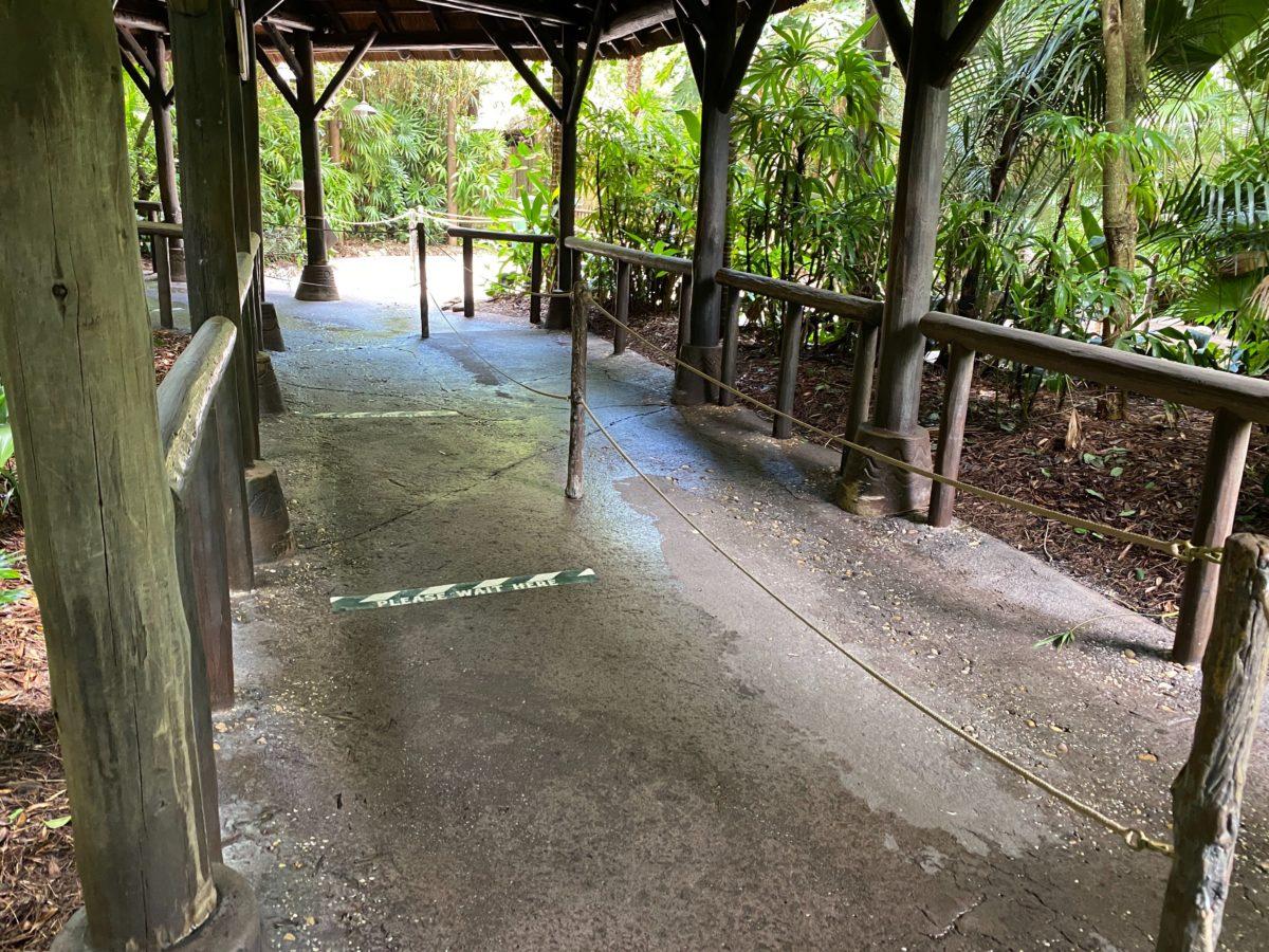 kilimanjaro safaris social distancing