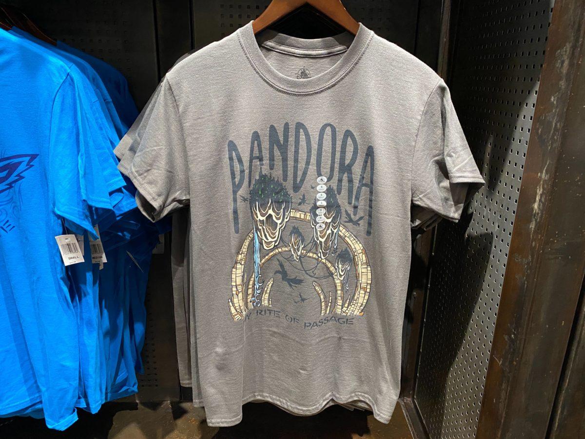 Pandora Floating Mountains Shirt - $24.99